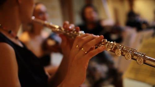 Игра на альтовой флейте