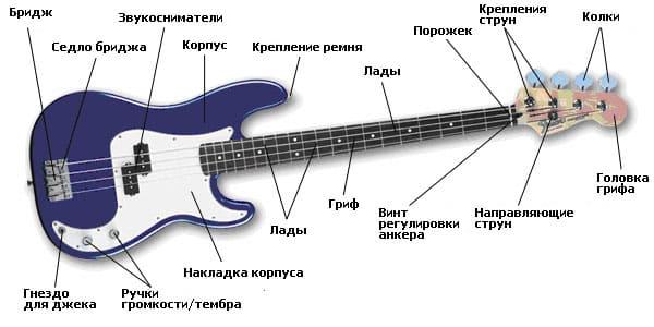 Строение бас-гитары