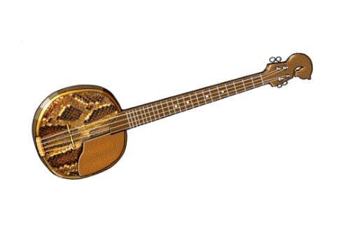 Музыкальный инструмент чанза