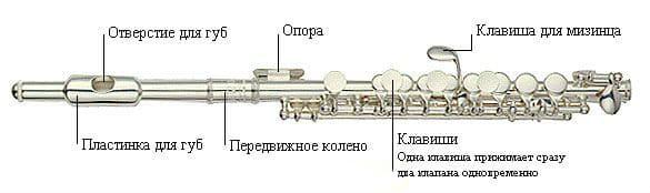 Строение флейты-пикколо