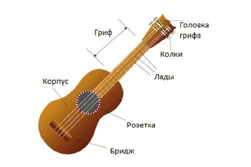 Строение укулеле