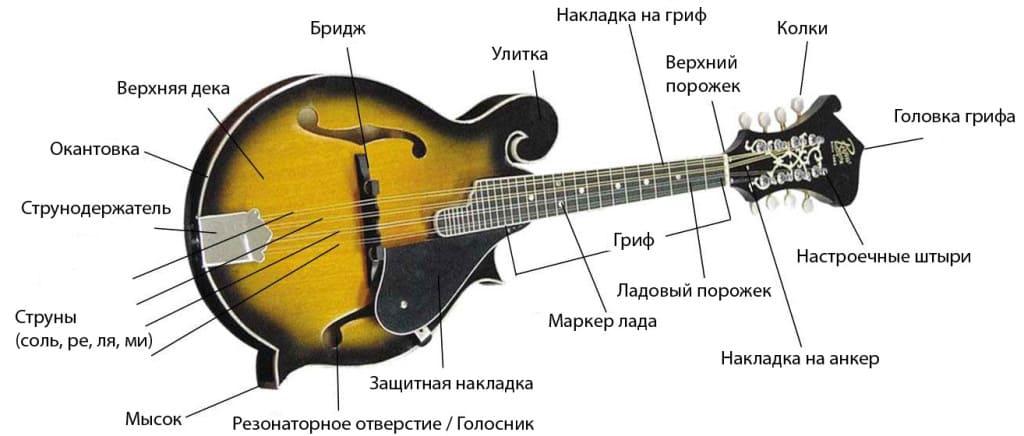 Устройство мандолины