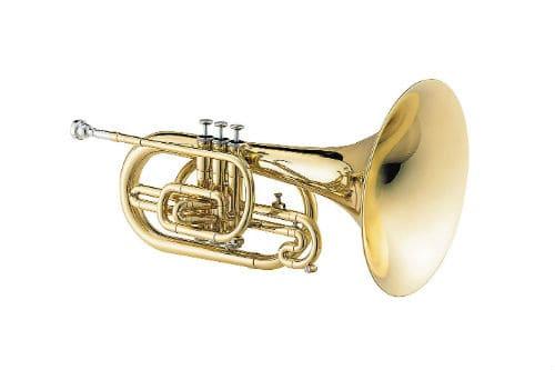 Музыкальный инструмент мелофон