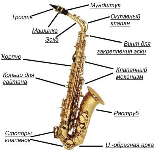 Устройство альтового саксофона
