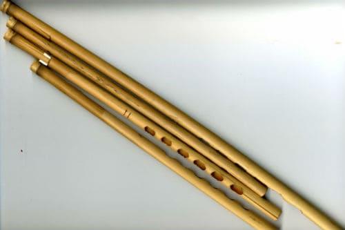 Музыкальный инструмент нюди