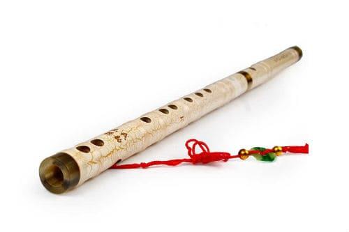 Музыкальный инструмент дицзы