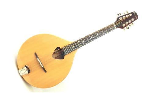 Музыкальный инструмент мандола