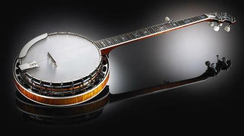 Четырехструнный банджо