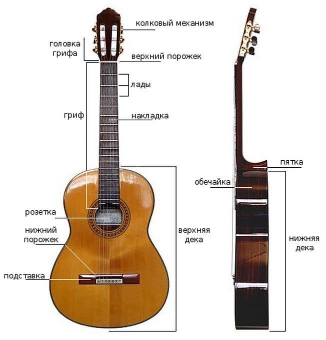 Устройство классической гитары