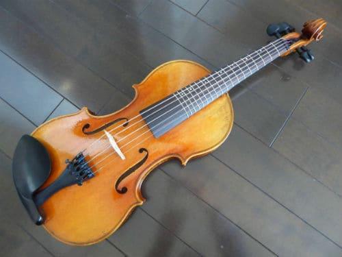 Пятиструнная скрипка