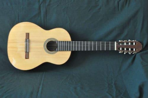 Музыкальный инструмент восьмиструнная гитара